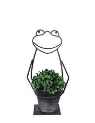 Metal Art Frog, Single Pot