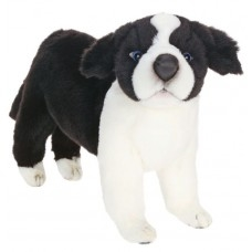 "Border Collie Puppy 9.75""h"