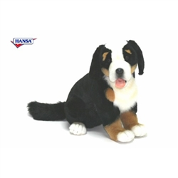 "Bernese Mountain Dog Puppy 14"" H"