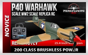 P40 Warhawk RC Airplane