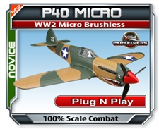 P40 Plug N Play Warhawk RC Airplane