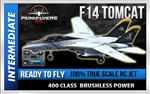 F-14 Tomcat Electric RC JET