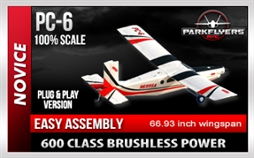 PC-6 RC Electric RC Airplane