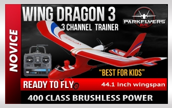 Wing Dragon III - RC Beginner Plane