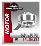 P40 Brushless Motor