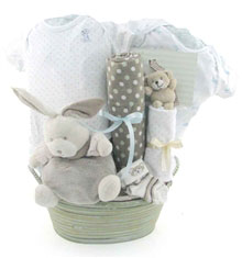 baby baskets 2080