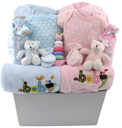 twins baby basket