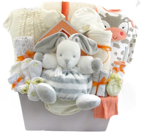 baby girl  themed baby basket deluxe