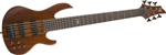 ESP LTD D-6 6-String Bass Guitar - Natural Satin