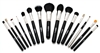 Premier 15-Piece Professional Make-up Brush Kit in Attractive Case