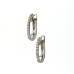 EDC01044 18k White Gold Earrings