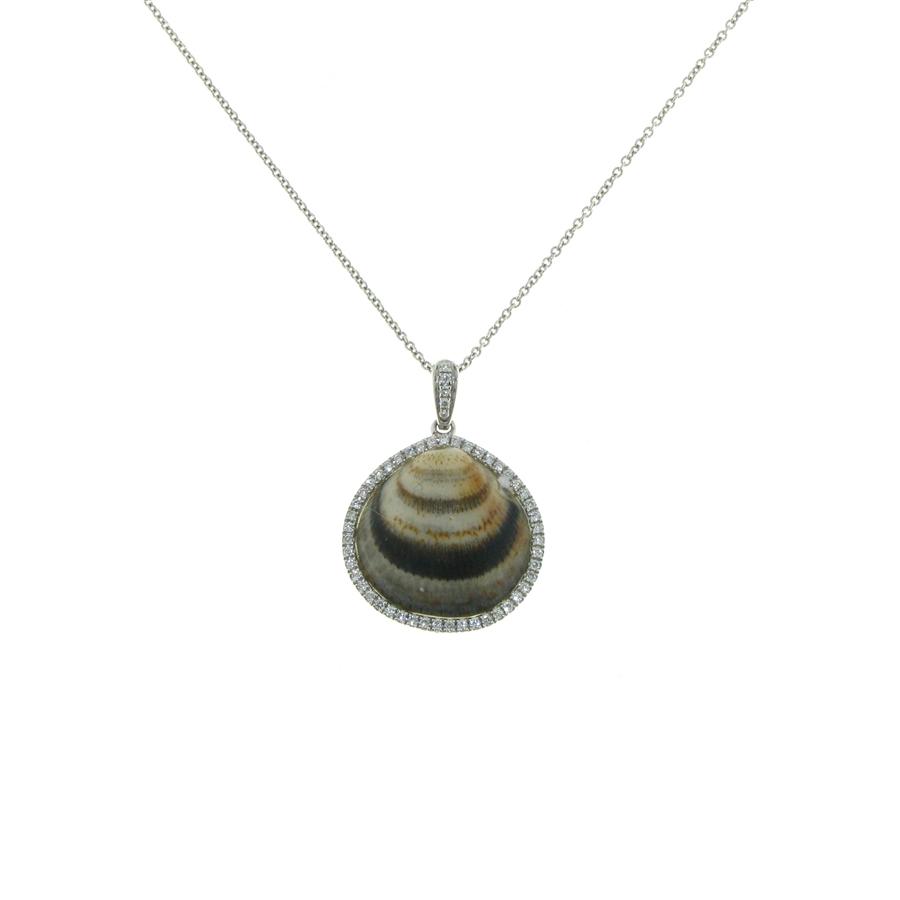 18k white gold diamond 20 carat haloed finished seashell pendant sg1005 nyx 18k white gold diamond seashell necklace aloadofball Gallery
