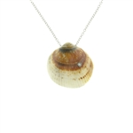 SG1019 Cote D'Azur Sterling Silver Diamond Seashell Necklace