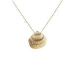 SG1020 Cote D'Azur Sterling Silver Diamond Seashell Necklace