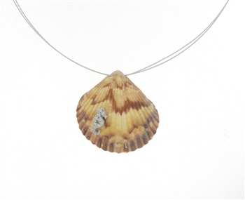 SG1103 Sterling Silver Seashell Necklace