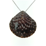 SG1106 Sterling Silver Seashell Necklace
