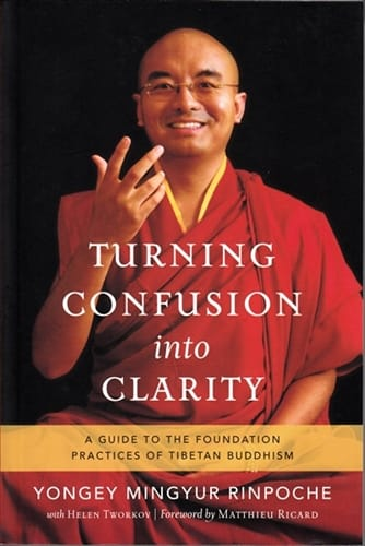 Turning Confusion into Clarity <br>A Guide to the Foundation Practices of Tibetan Buddhism <br>by Yongey Mingyur Rinpoche