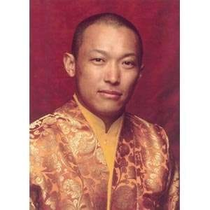 New Sakyong Mipham Rinpoche Shrine Photo 5X7