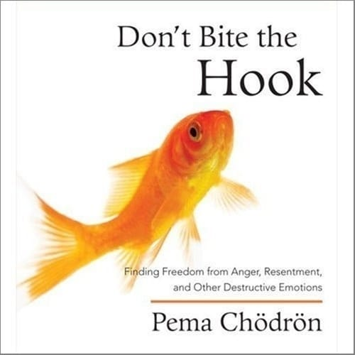Don't Bite the Hook <br> Finding Freedom from Anger, Resentment and Other Destructive Emotions <br>by Pema Chodron <br>On 3 CDs