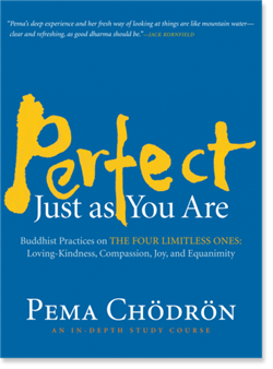 Perfect Just as You Are <br>Buddhist Practices on the Four Limitless Ones: Loving-Kindness, Compassion, Joy, and Equanimity <br>by Pema Chodron <br>8 audio CDs