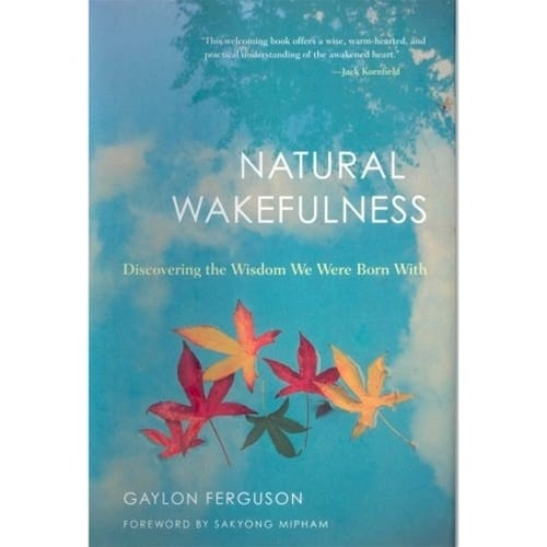 Natural Wakefulness by Gaylon Ferguson