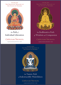 Profound Treasury of the Ocean of Dharma Three Volumes