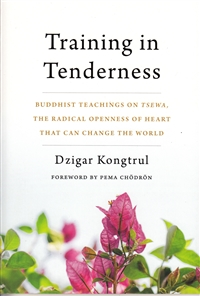 Buddhist teachings on Tsewa, the radical openness of heart that can change the world.