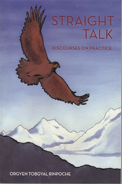 Straight Talk: Discourses on Practice by Orgyen Tobgyal Rinpoche