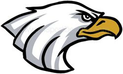 Eagle helmet sticker decals