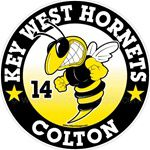 Hornet car window sticker decals
