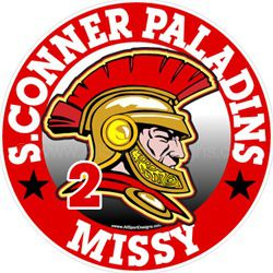 Paladin trojan car window sticker decals & magnets
