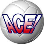 Volleyball window sticker decal clings & magnets