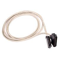 Digium Amphenol Cable