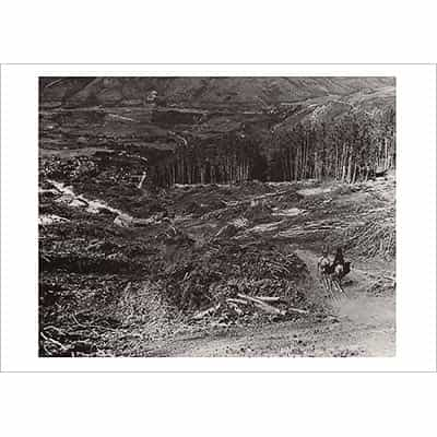 Ruthies Run Being Cut On Aspen Mountain Greeting Card