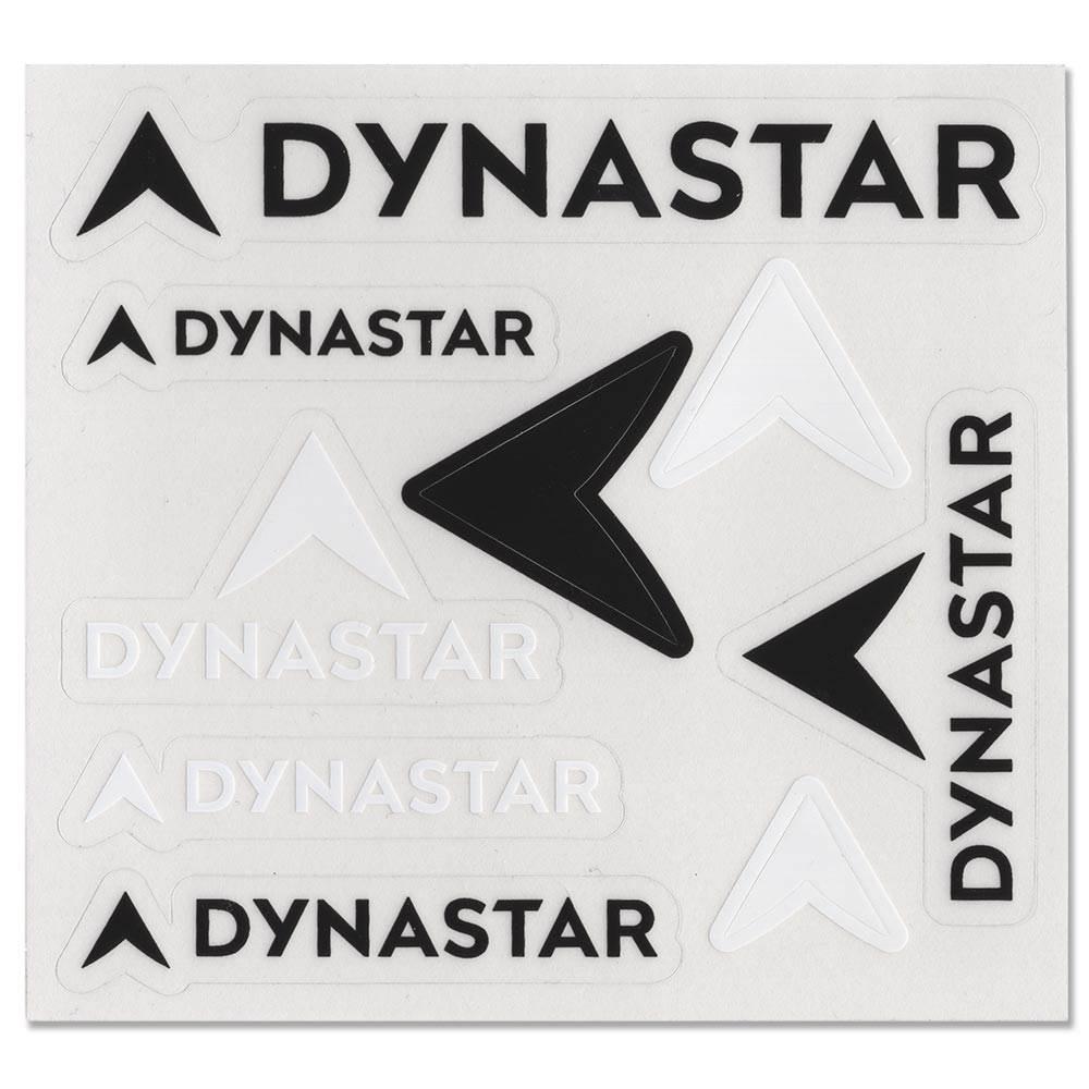 Dynastar Skis Sticker Set Of 9