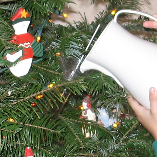 Christmas Tree Watering System.Stay Real Christmas Tree Waterer