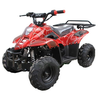110cc Atv For Sale >> Coolster 3050c 110cc Atv Mini Size Rear Rack Included