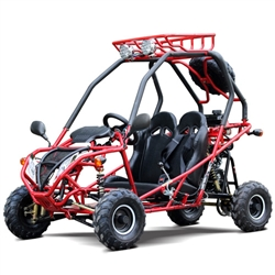110cc GoKart Power Buggie