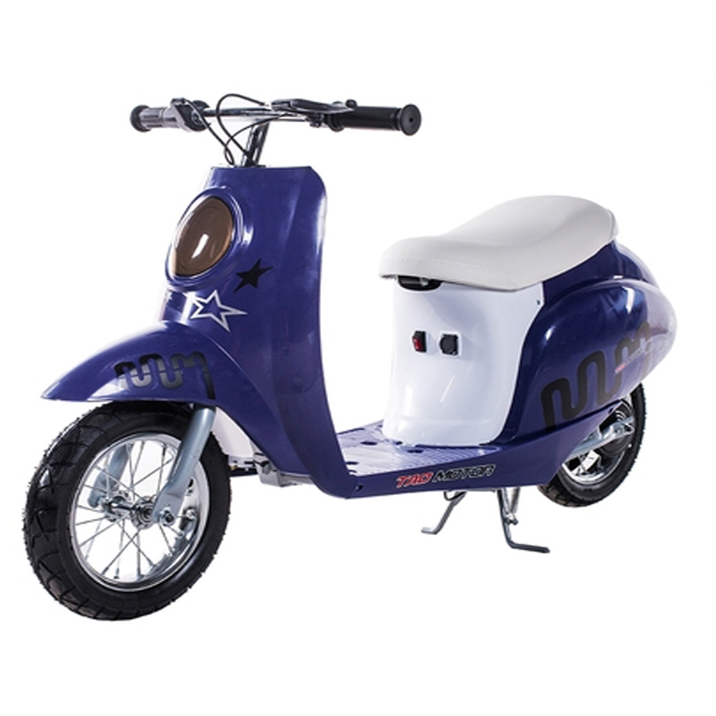 Tao 250w Electric Scooter