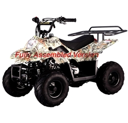 TAOTAO 110cc Kids ATV, Fully Assembled Boulder B1