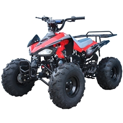 110cc Kids ATVs TaoTao cheetah Kids ATV, taotao atv