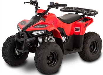 Rival Mud Hawk 6 110 Kids ATV
