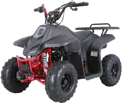 TAOTAO 110cc Kids ATV Rock