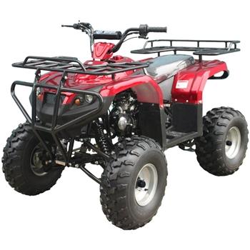 Tao Tao 125cc ATV Full Size ATV