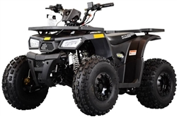 Rival Mud Hawk 10 125 Kids ATV