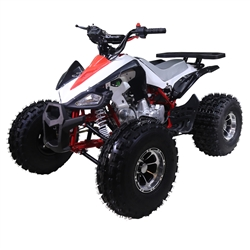 125cc ATVs TaoTao New Cheetah Mid Size ATV