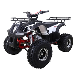 125cc ATV NEW TFORCE