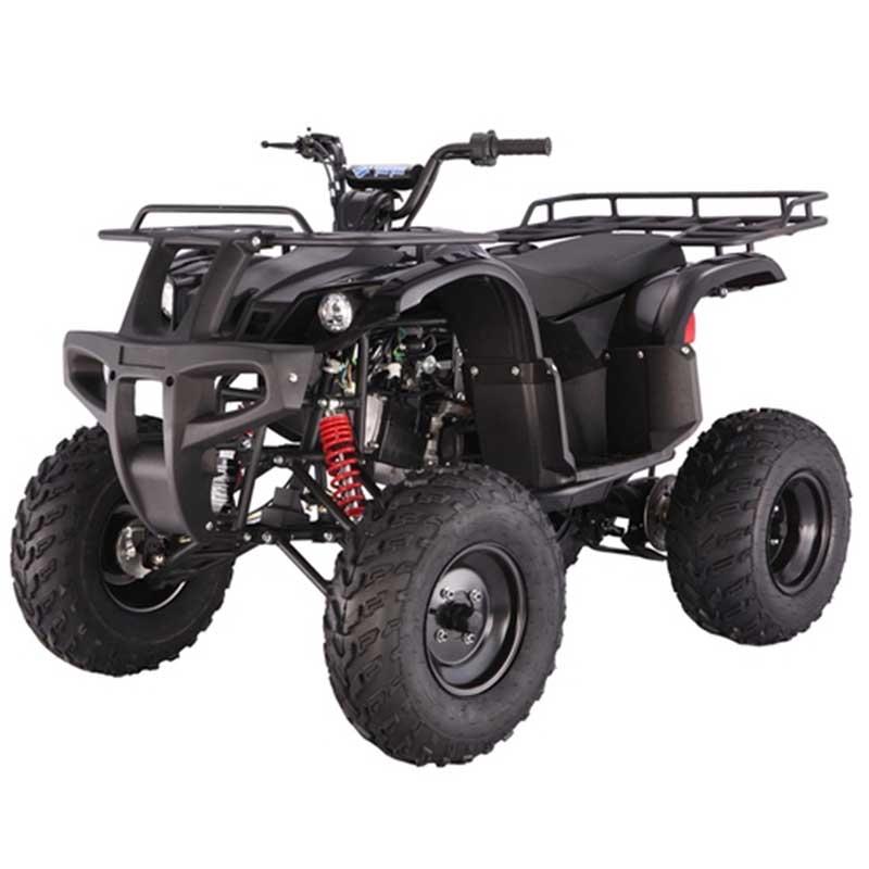 Tao Tao Bull 150 150cc ATV