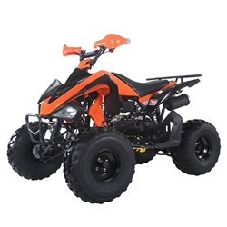 150cc Adult ATV sports TaoTao ATA - 150G