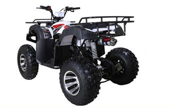 Tao Tao Bull 200 ATV Upgraded Version